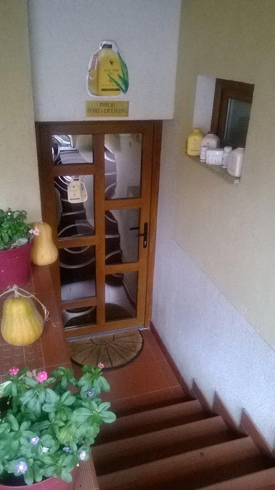 distribuitor autorizat forever living birou forever living oradea str garoafei nr 3 A Aloe vera oradea