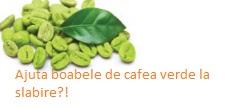 Ajuta boabele de cafea verde la slabire supliment cu cafea verde forever