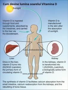 Candidoza - cauze, simptome, tratament | Bioclinica