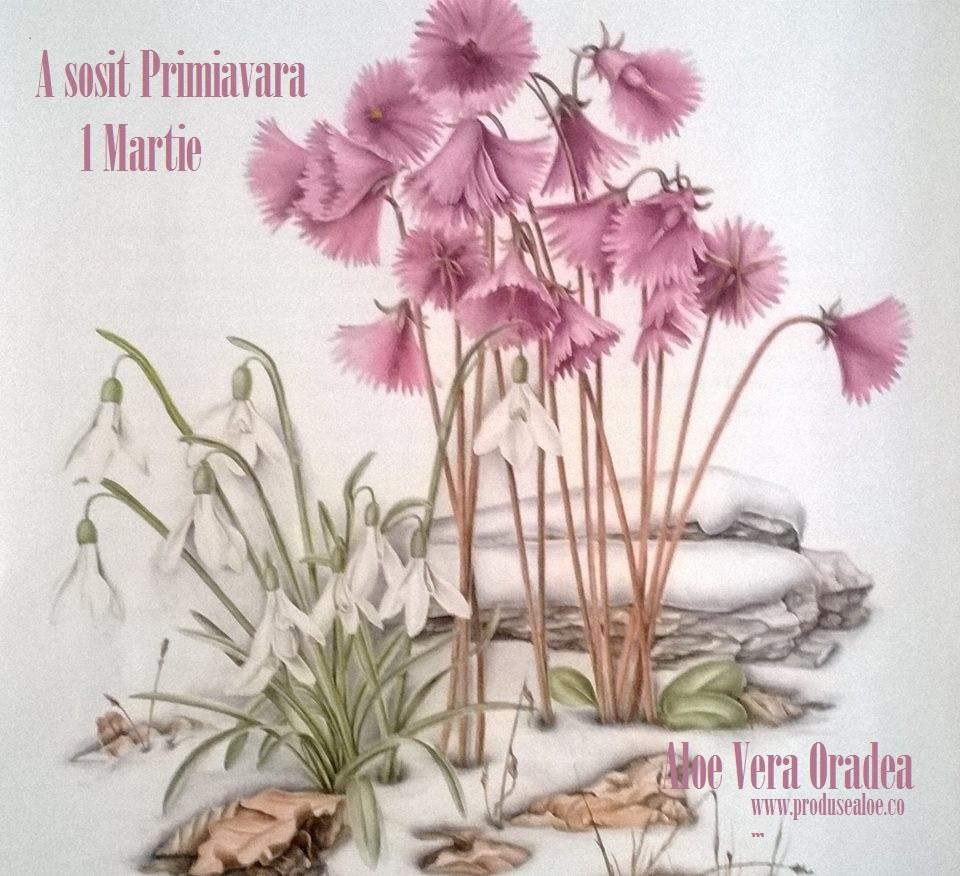 a sosit primavara vine 1 martie 2015 va urez martisor fericit flori de primavara martisor