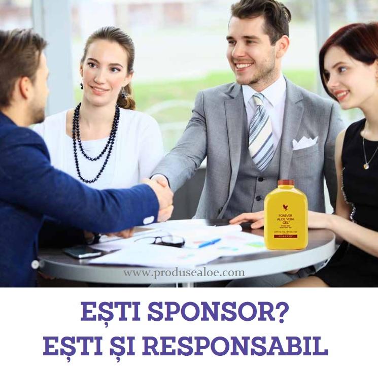 Responsabilitatea unui Lider Sponsor resposnabil